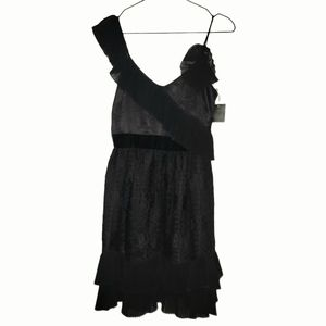 Anna Sui 100% Silk Black Dress NWT (stunning)